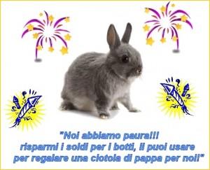 Campagna del Coniglio Nano contro i botti di Capodanno