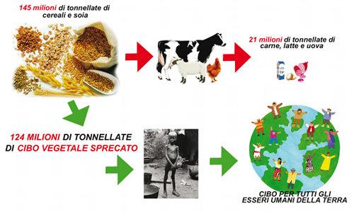 spreco-cibo-fame-nel-mondo